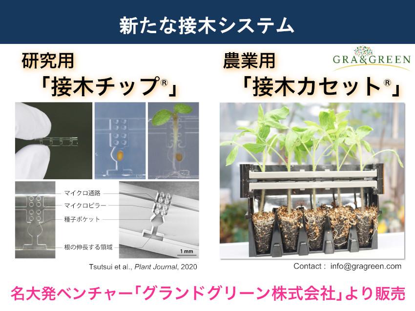 210222_Notaguchi2_ページ_3.jpg