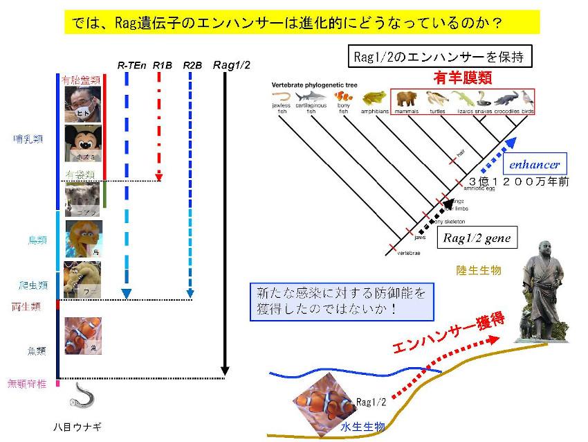 Miyazaki_Summary2.jpg