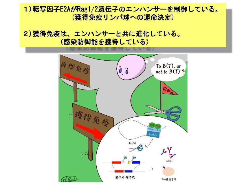 Miyazaki_Summary3.jpg